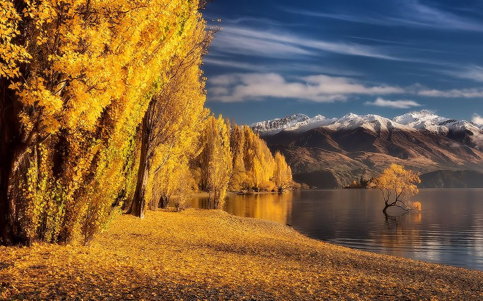 Осень экран