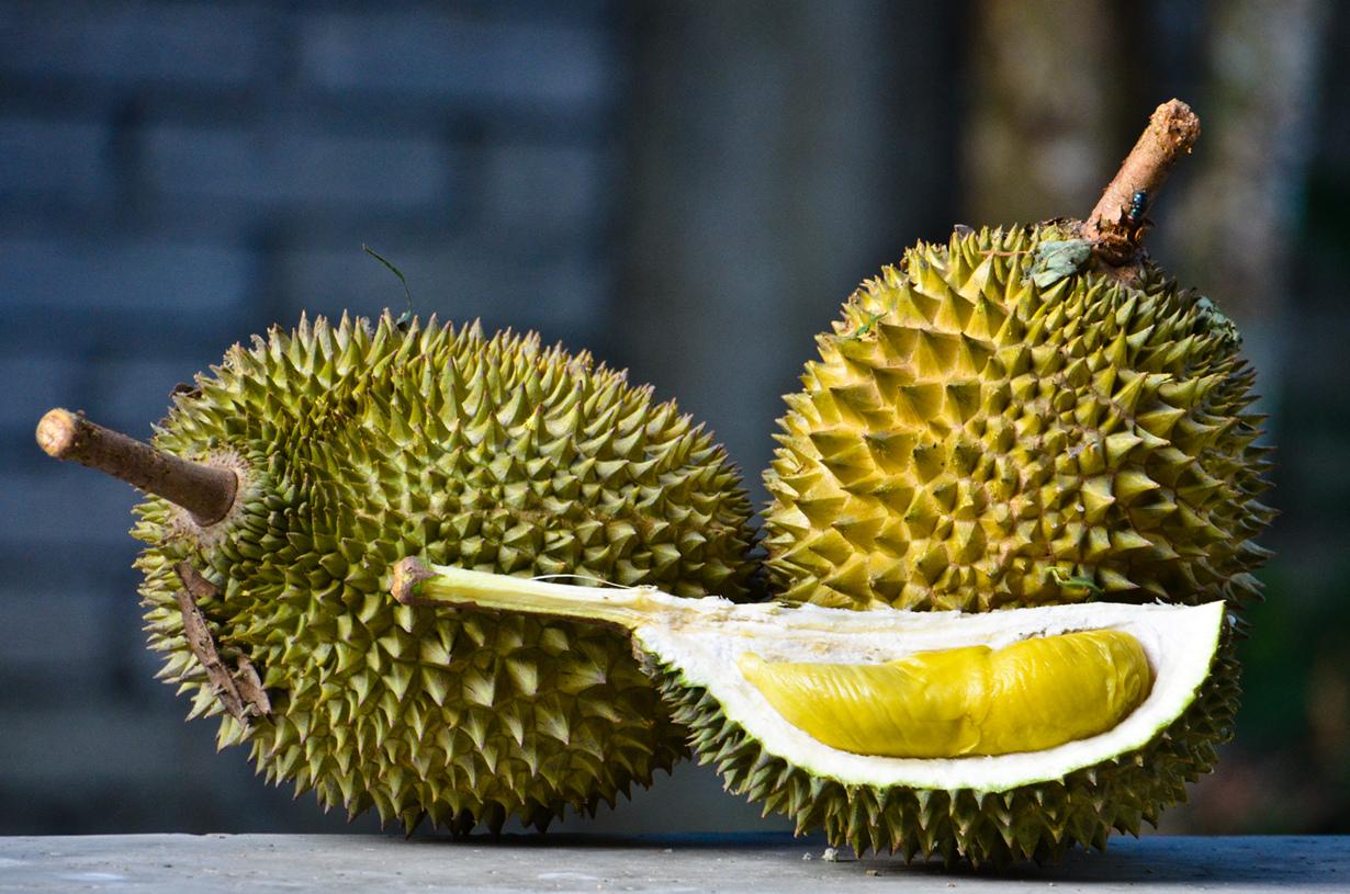 Дуриан. Плод источает зловонный аромат, но имеет божественный вкус, напоминающий сладкий крем из