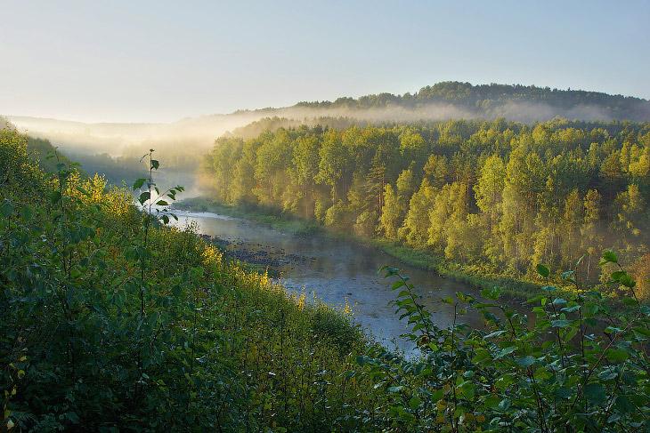 2. В 1970 году на этих территориях был организован природный парк «Вепсский лес». В нем выделено сем