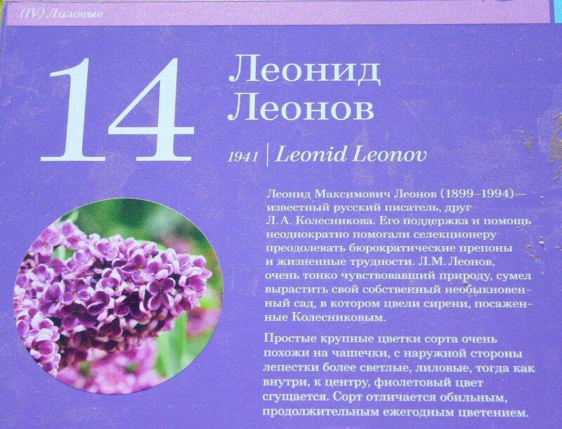 24 IMG_4836.JPG