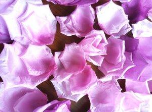 Роза - царица цветов 3 - Страница 16 0_13e33d_f78888b7_M