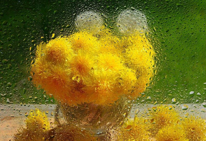 Весенний дождик