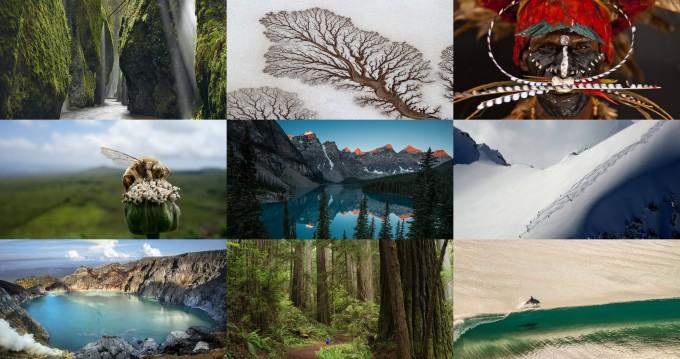Лучшие работы фотоконкурса National Geographic 2014 года