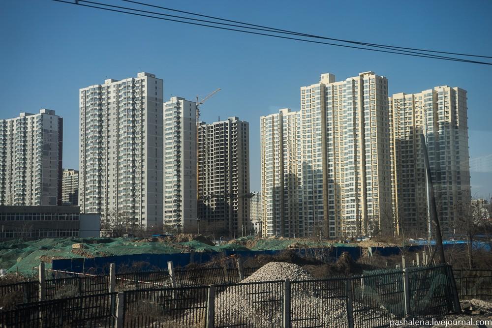 Виды за окном однообразные: озимые поля сменяются бесконечными строящимися жилыми комплексами, похож