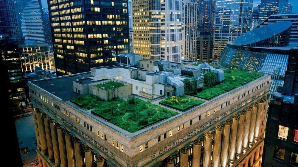 Здание правительства в Чикаго На крышу здания Сити-Холл (City Hall) в Чикаго обычным прохожим попаст