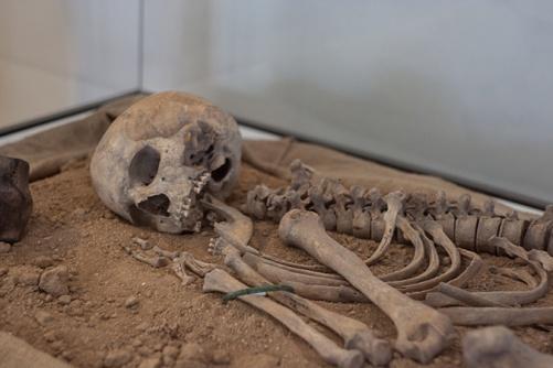 Археологи отыскали под водой скелет «программиста» изДревней Греции