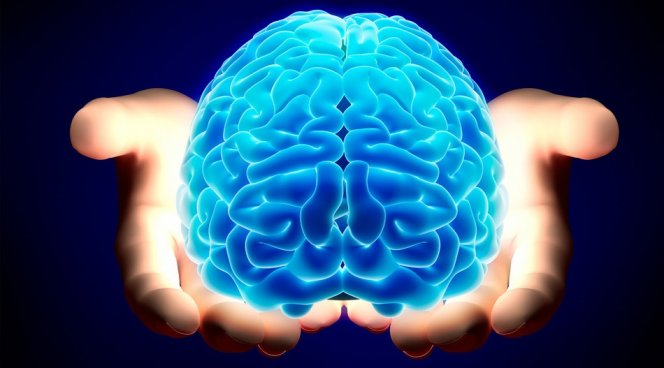 Впервый раз вистории человечества: ученые отыскали совесть наснимках мозга