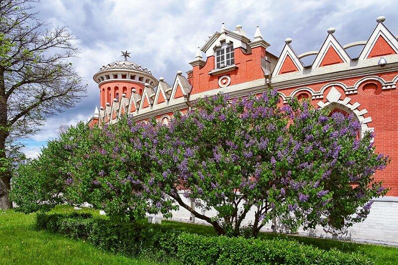 Башня и стены Петровского Путевого дворца в сиреневом пояске...