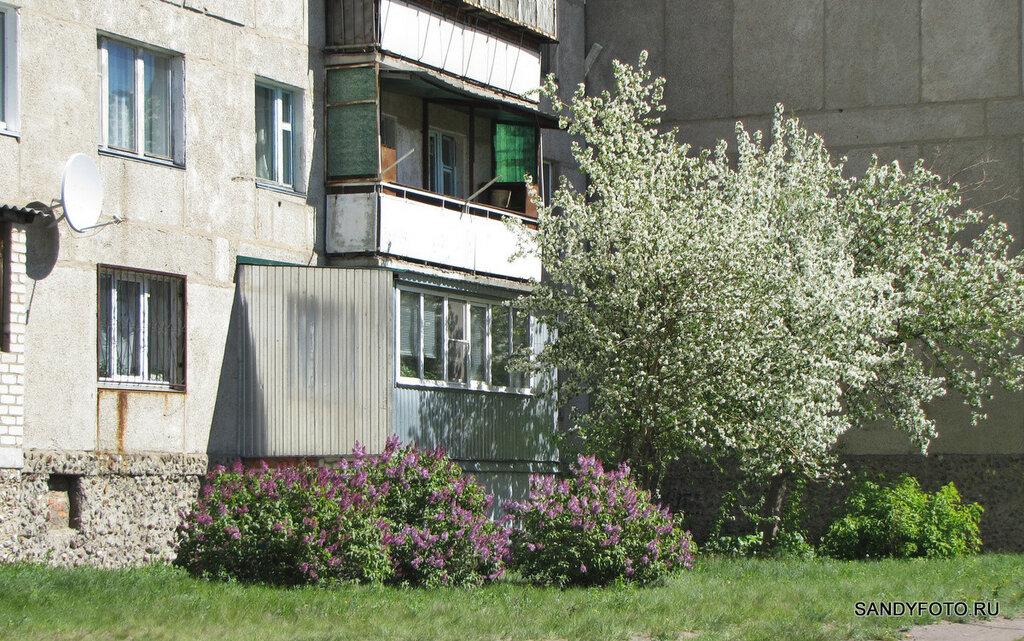 Цветущий Троицк — улицы города — часть  седьмая