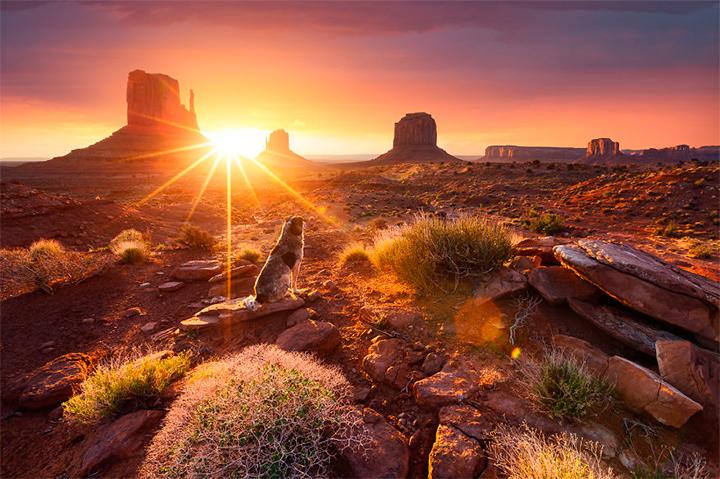 солнце в Долине памятников, США