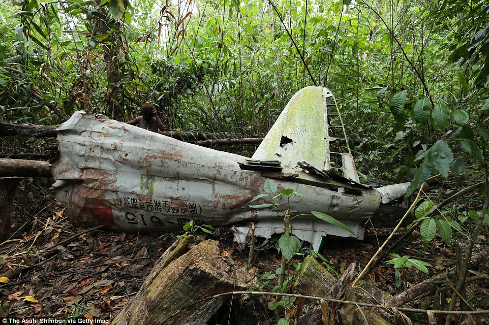 Обломки японского истребителя «Зеро» в лесу на острове Гуадалканал, Соломоновы острова.