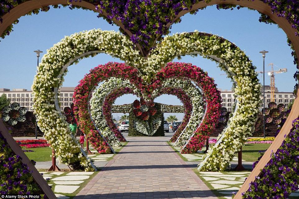 В отличие от многих других садов мира, растения в Саду чудес выращиваются на шпалерах различных конф