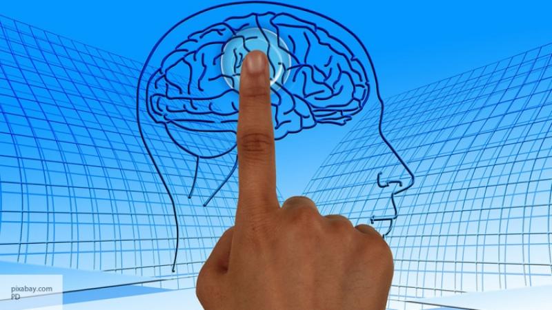 Мозг производит фруктозу изглюкозы
