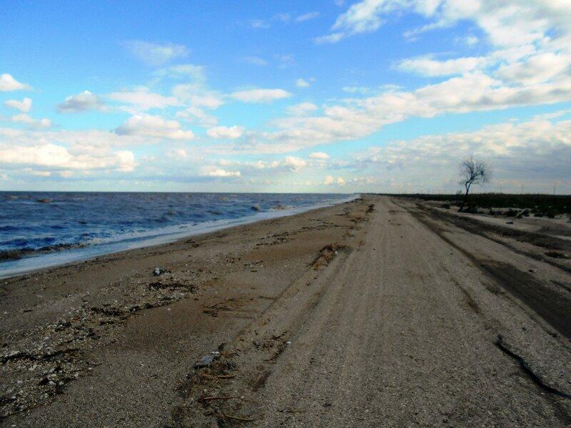 У моря, на песчаной дороге ...   DSCN5222.JPG