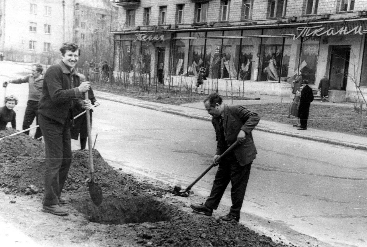 1969. Посадка деревьев на Бойцовой улице