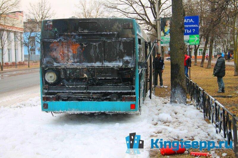 Пикантные истории в автобусе фото 274-180