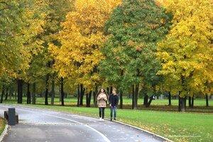 Каким должен быть современный городской парк