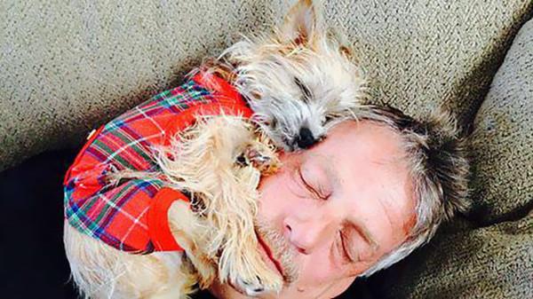 """3. """"Мой папа и правда не хотел заводить собаку, но теперь я иногда нахожу их в таком виде"""""""