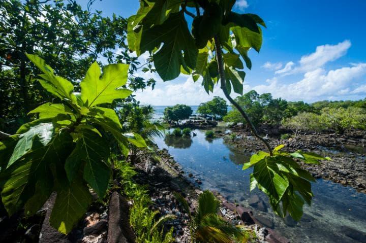 Нан-Мадол, Микронезия. Под угрозой с 2016 года.