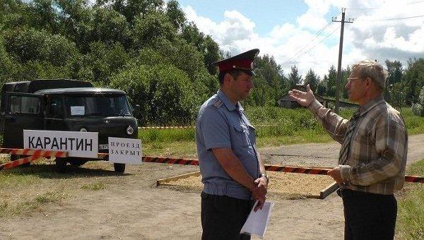 ВПорецком районе выявлен очаг африканской чумы свиней