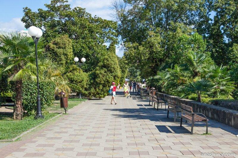 Приморский парк, Сочи