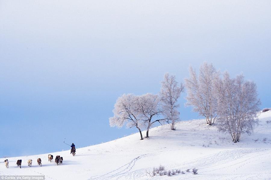 19. Монгольский пастух на плато Башан на северо-западе китайской провинции Хэбэй.