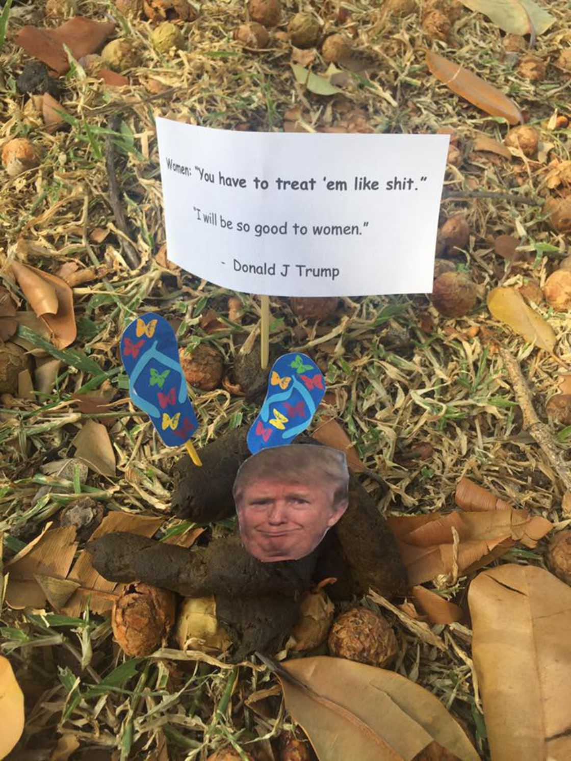 Pieces of Trump - Displaying quotes from Donald Trump on dog excrement