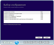 Сборка Windows 10 5in1 (x86/x64) Elgujakviso Edition (v19.12.16) [Русская]