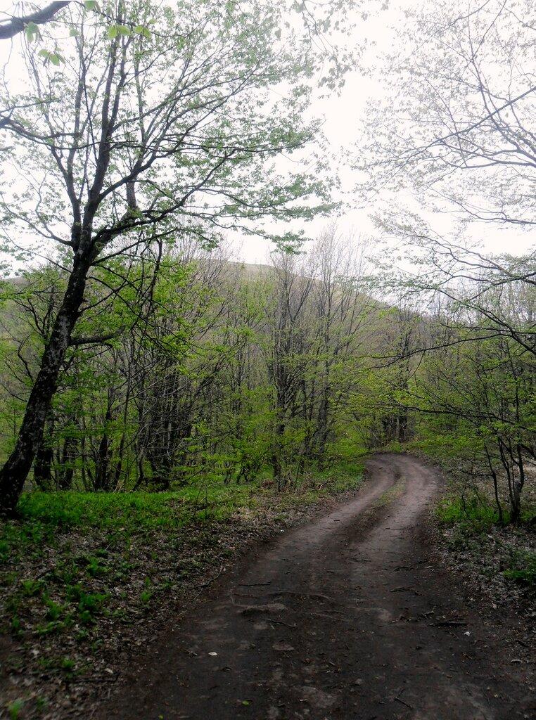 Дорога у Семашхо... SAM_6829.JPG
