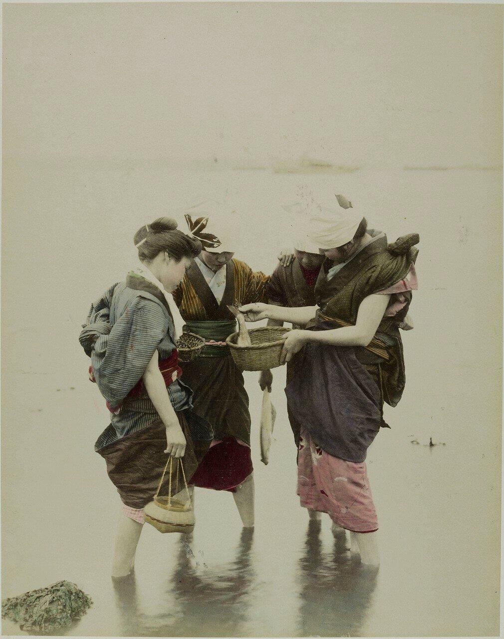 Японки рассматривают рыбу