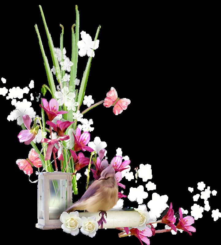 Птицы разные (107).png