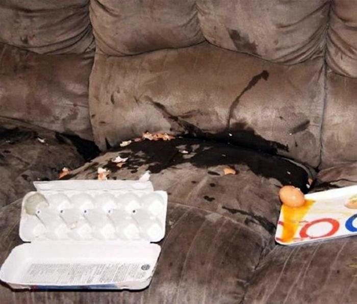 Разбитые яйца на диване. 15.