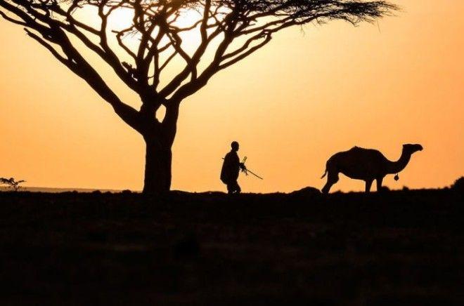 Африку нужно увидеть своими глазами. Республика Кения