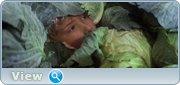 http//img-fotki.yandex.ru/get/108697/4074623.d4/0_1c2993_39b80cbd_orig.jpg