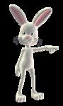 Весёлый кролик.
