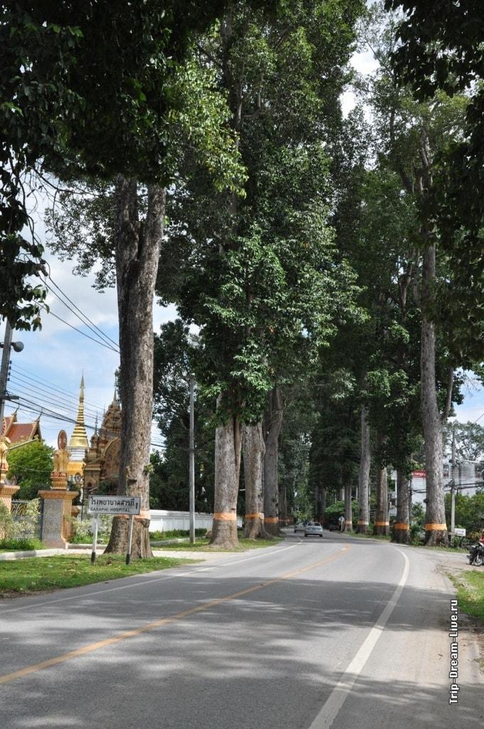 дорога в Лампхун