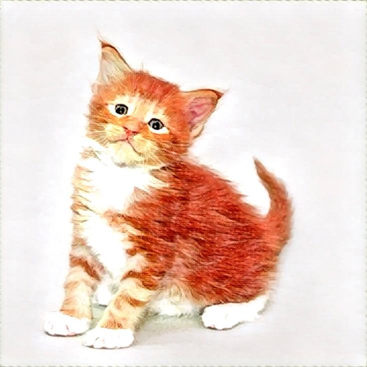 призма котики