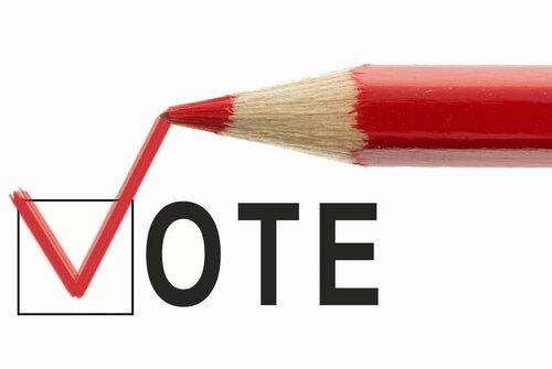 """На выборах в Молдове """"подключат"""" мировую интернет аудиторию"""