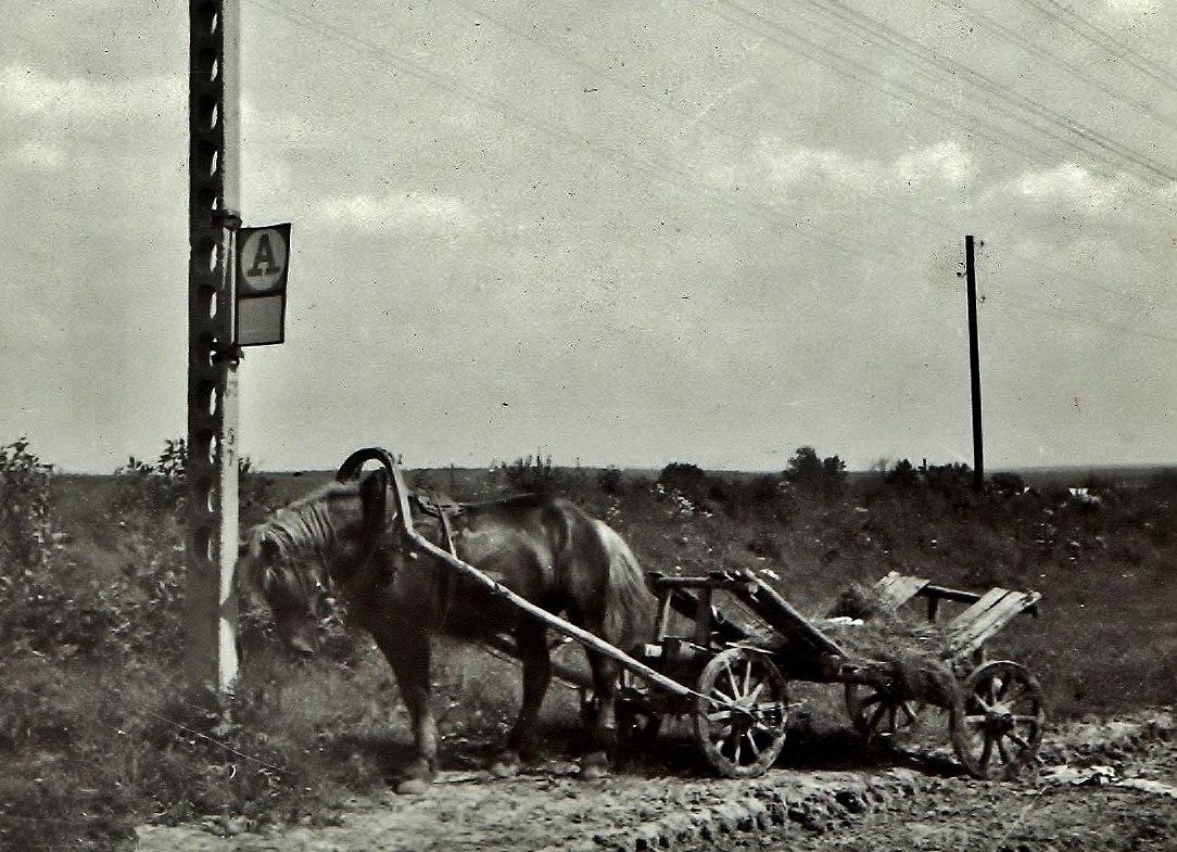 Московская область. Остановка автобуса. Деревня Малинники 1973 - 1974 гг..jpg