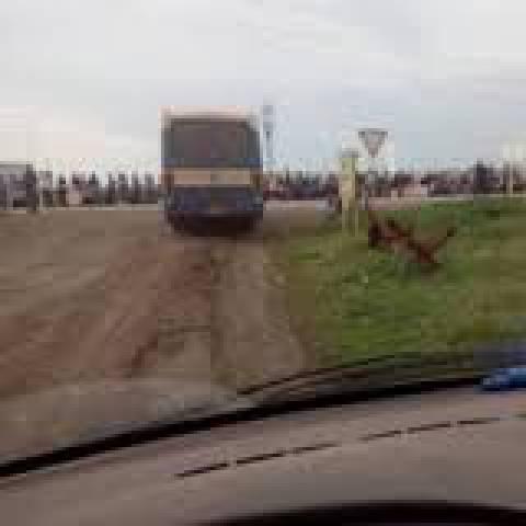 """На КПП """"Марьинка"""" - очередь из 420 автомобилей, - Госпогранслужба"""