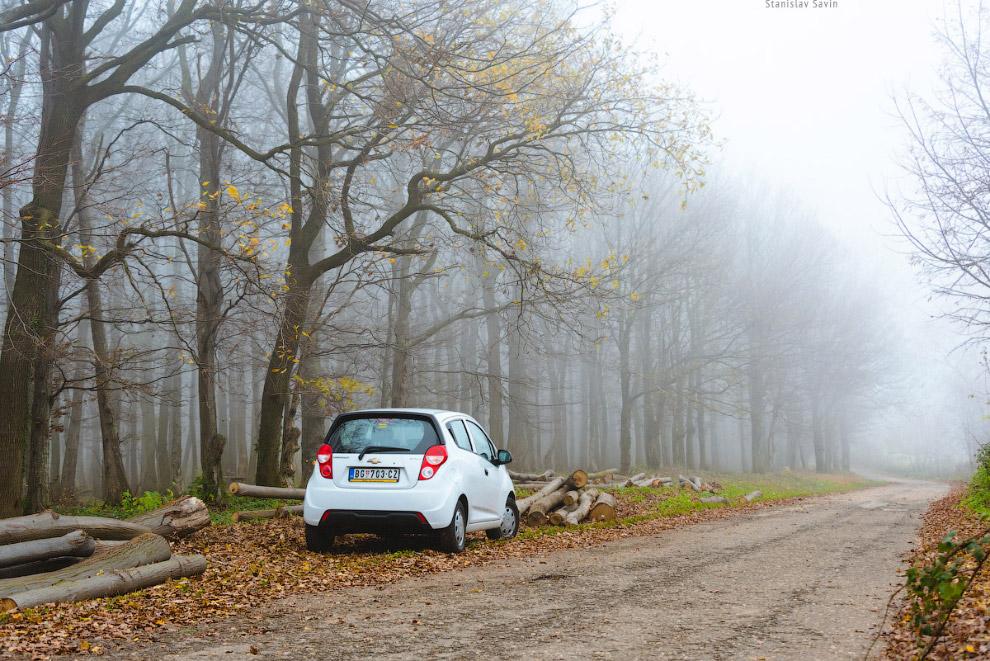 3. Сербия встретила меня густыми туманами. Я не успел на золотую осень, она закончилась букваль