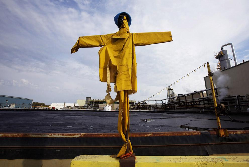 11. Гигантские самосвалы везут нефтеносные пески Канады на переработку. Также смотрите « Самый больш