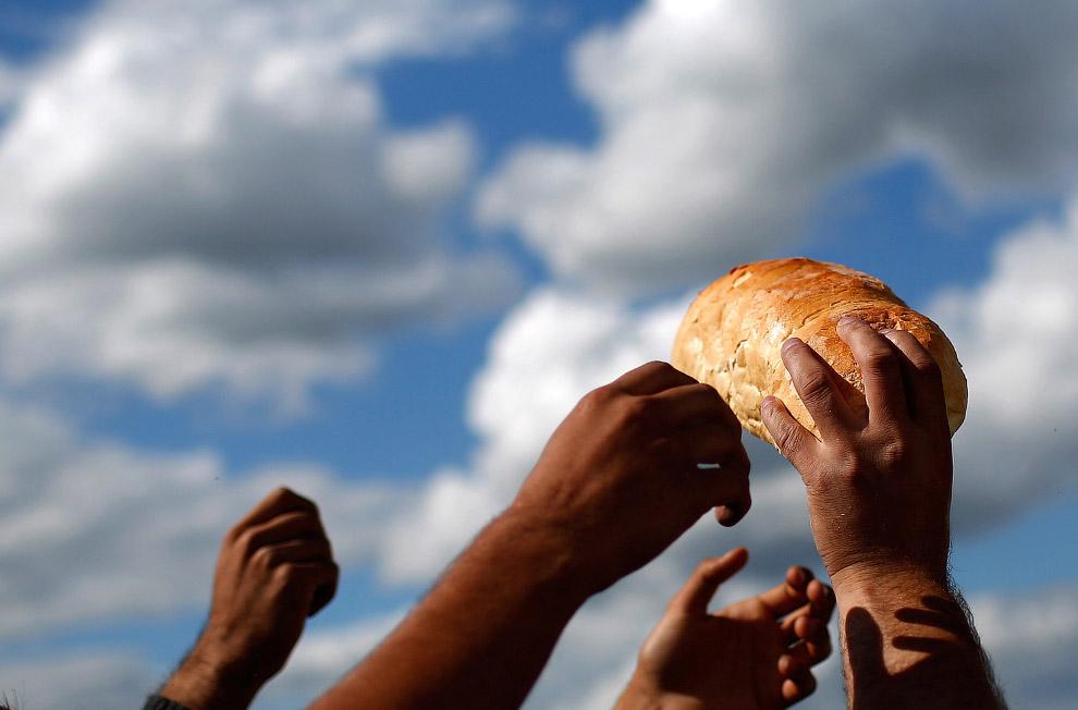15. Мигранты жарят кукурузу на границе с Венгрией, 7 сентября 2015. (Фото Win McNamee):