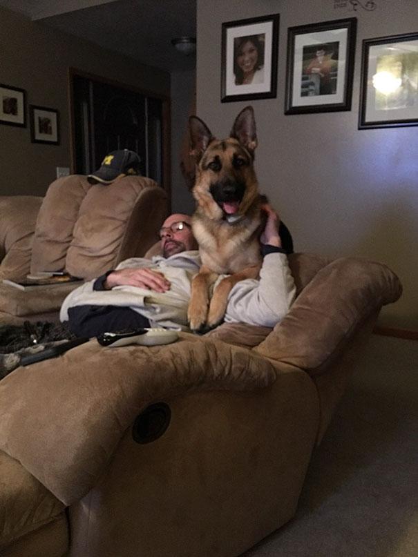 «Мой папа не хотел собаку в доме. Теперь они лучшие друзья».