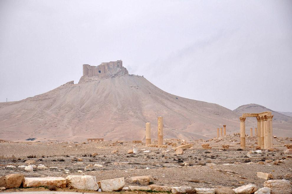 14. Разрушенная древняя Пальмира и цитадель. (Фото Louai Beshara):
