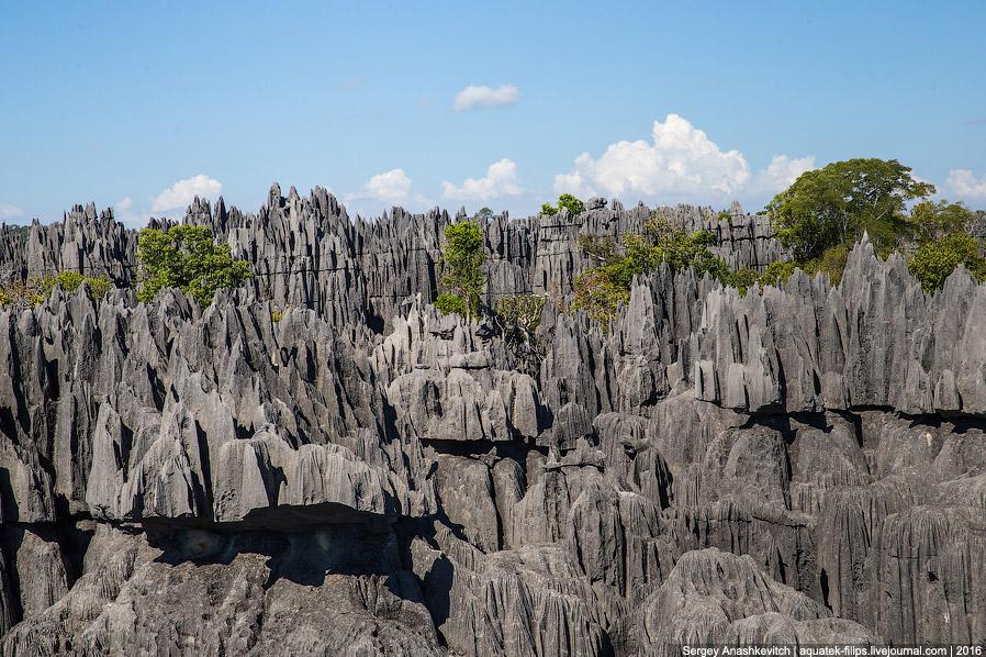 10. На месте, где сейчас находится этот каменный лес, миллионы лет тому назад был океан и его в