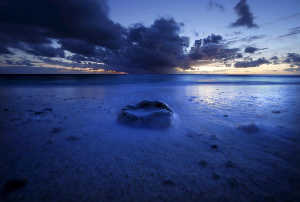 12. Огромный урон хрупкому равновесию коралловых рифов наносят тропические ураганы. Не меньший