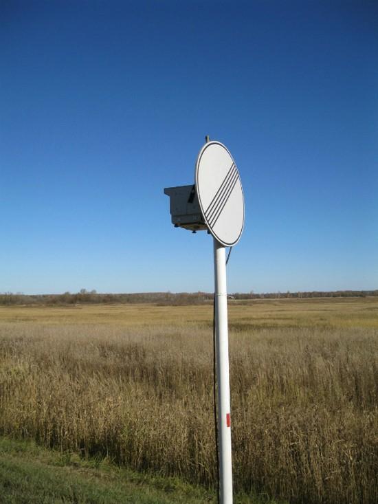 6. Дорожный знак Дорожные знаки тоже могут скрывать сюрпризы.
