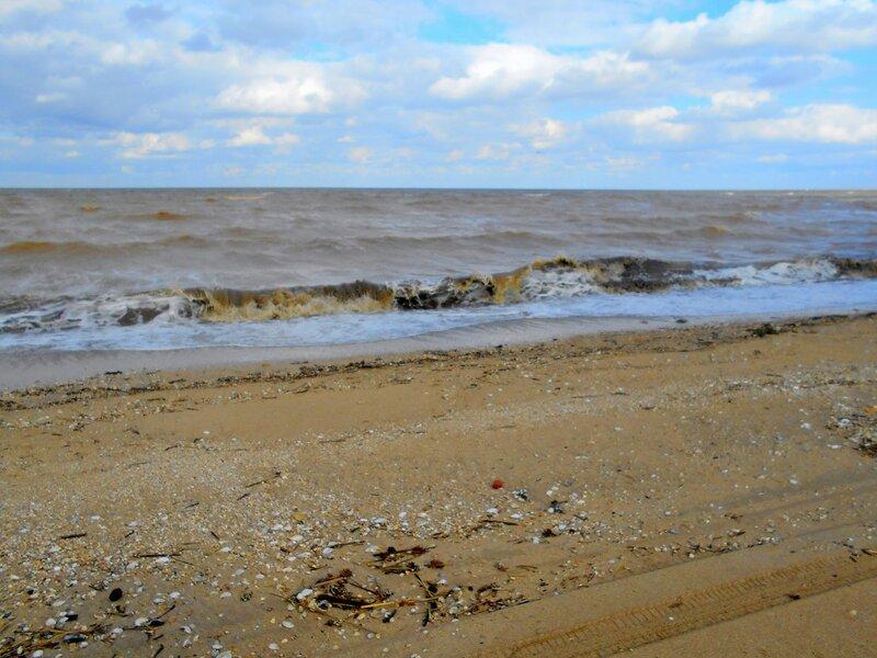 У моря, ветер, Весна... DSCN5231.JPG