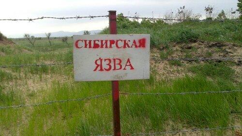 Первая пациента на Ямале после сибирской язвы выписана